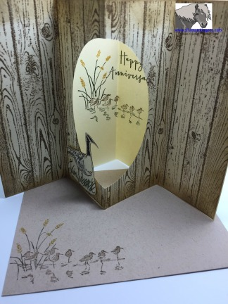 Anniversary Tunnel Card and Envelope watermarked