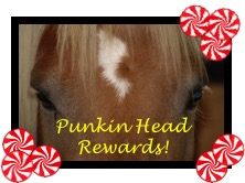 Punkin Head Rewads