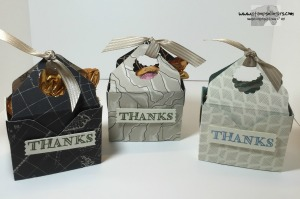 Going Places Mini Bag in a Box 2 - Stamps-N-Lingers