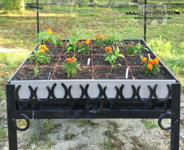 Veggie bed 2 - Stamps-N-Lingers