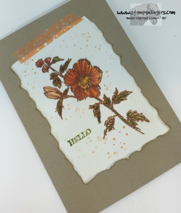 Fabulous Flora Notecard 4 - Stamps-N-Lingers