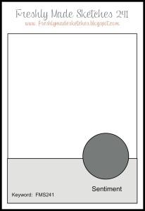 FMS 241 Sketch