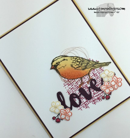 Love a Best Bird 4 - Stamps-N-Lingers