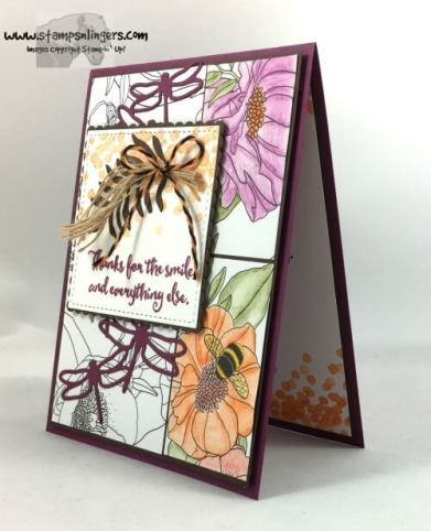 dragonfly-dreams-outside-the-lines-3-stamps-n-lingers