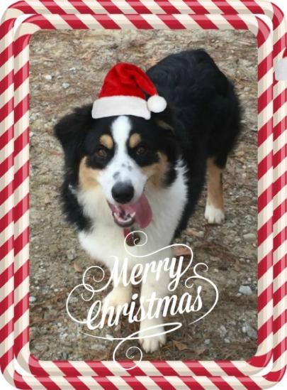 finn-saying-merry-christmas