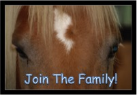 join-the-family-cerah