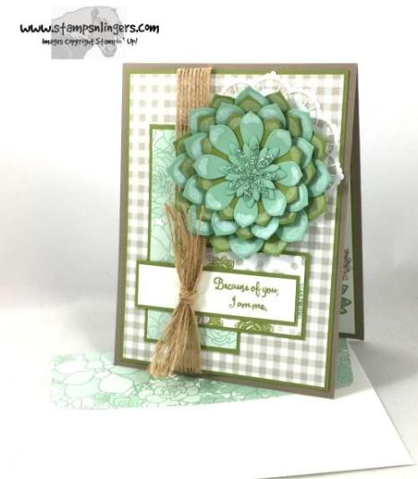 succulent-garden-mothers-day-7-stamps-n-lingers